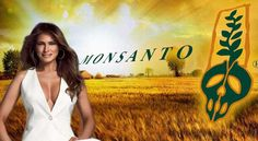 first lady melania trump has issued a ban on monsanto products from the white house