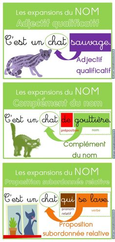 Posters for the expansions of the name (adjective qualifier, complement of the n . Teaching French, How To Speak French, Learn French, Autism Education, French Education, French Grammar, French Phrases, French Classroom, French Tips