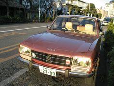 02032013 Sarugakucho