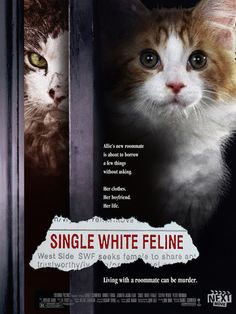 Movies recast with cats ... Single White Feline! Click through for more.