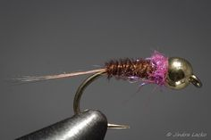 Grayling on the Fly