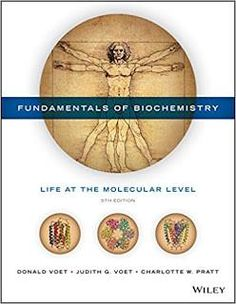 Modern marketing research concepts methods and cases 2nd edition by test bank and solution manual for fundamentals of biochemistry life at the molecular level 5th edition voet voet pratt test bank solution manual cases if fandeluxe Image collections
