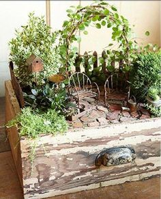 A recycled drawer is the perfect container for a minature garden!   ♥    http://www.midwestliving.com/garden/container/creative-containers/?page=19%2C0