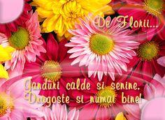 Felicitare de Florii cu mesajul De Florii... Ganduri calde si senine, Dragoste si numai bine!
