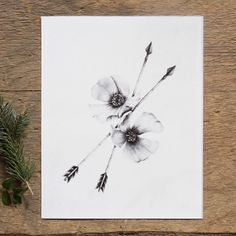 Hey, I found this really awesome Etsy listing at https://www.etsy.com/listing/151301101/wild-rose-and-arrows-8x10-giclee-fine