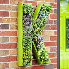 Cute.Way to brighten up your front entrance. Green may not the color but a modern cheap way to change your curb appeal.