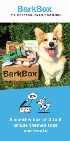Limited time offer! Get your first BarkBox for just $5. To redeem, click through this pin and sign up for a 6 or 12 month plan (offer ends 8/26/16). BarkBox delivers a monthly themed box of curated all-natural doggy treats and fun toys to your door. It's a pawsome experience for you and your pup. Plans can be customized for big or small dogs, heavy chewers, and pups with allergies. Most of all, it just makes dogs happy.