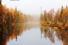 🇫🇮 Autumn trees reflected (Finland) by Anja Vest nw. Bass Lake, Forest Painting, Ukraine, Tree Leaves, Hello Autumn, Autumn Trees, Natural Wonders, Love Photography, Four Seasons