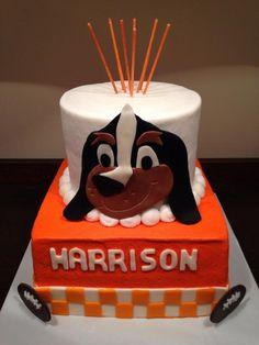 University of Tennessee birthday cake with mascot Smokey