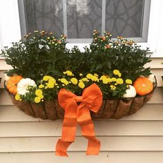 Cheap and easy fall window boxes ideas 32 Fall Flower Boxes, Fall Flowers, Flower Pots, Flower Ideas, Window Planters, Fall Planters, Planter Boxes, Fall Window Boxes, Window Box Flowers