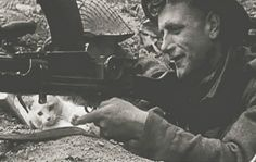 There's no information available about this photograph, but you'll note how intently the kitten is watching the soldier take aim! It's an incongruous combination, the cute kitten and the deadly weapon. For more: www.elinorflorence.com/blog/wartime-animals