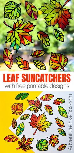 Make stained glass leaf suncatchers with kids and decorate windows for the fall! This autumn craft comes with five free printable designs. #autumn #craft #artsandcrafts #kidscrafts #suncatcher #homeschool #homedecor