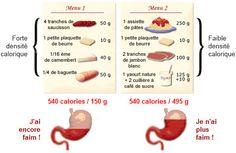 Densité énergétique / Exemples de menus à 540 calories