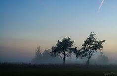 Misty sunset. ALAS PUTREFACTAS - Poem in description in Spanish