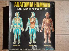 Antiguo juego de anatomia humana. Aprendías montándola.