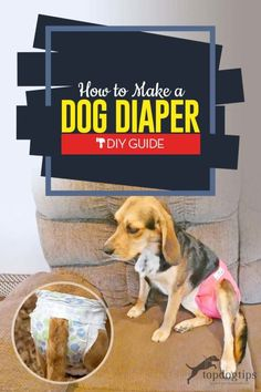 Learning how to make a dog diaper saves money and is more eco-friendly than buying disposable products. It's a simple DIY process. Puppy Diapers, Diy Diapers, I Love Dogs, Cute Dogs, Female Dog In Heat, Female Dog Diapers, Disabled Dog, Dog Wheelchair, Dog Care Tips