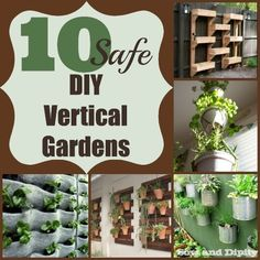 10 great ideas for safely planting vertical gardens.