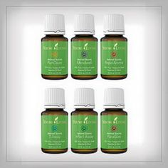 Young Living is the World Leader in Essential Oils. We offer therapeutic-grade oils for your natural lifestyle. Authentic essential oils for every household. Yl Oils, Yl Essential Oils, Therapeutic Grade Essential Oils, Young Living Essential Oils, Young Living Business, Oils For Life, Scented Oils, Young Living Oils, Health And Wellness