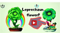 Cryptoflowers : Monochrome en Leprechaun effect