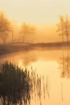 Photo Golden morning by Ernest van de Wall on Beautiful Landscapes, Beautiful Images, Beautiful Sunset, Lake Beach, Brown Aesthetic, Water Reflections, Photo Projects, Out Of This World, Print Pictures