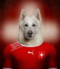 Native Dogs Represented as World Cup Soccer Players - My Modern Metropolis