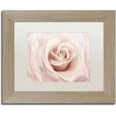 Trademark Fine Art 'Peach Pink Rose' Canvas Art by Cora Niele, White Matte, Birch Frame, Size: 16 x 20, Multicolor