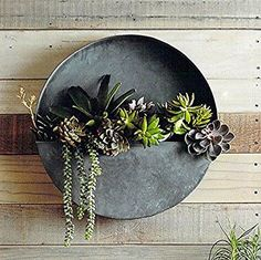 Round Hanging Wall Vase Planter for Succulents or Herbs - Beautiful Wall Decor for Air Plants, Faux Plants, Cacti and more - In Gift Box