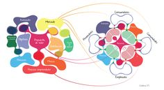 Del modelo de negocio tradicional al modelo de negocio social. www.businesslifemodel.com