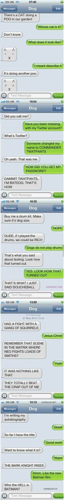 Top 5 #Funny Text Messages ft. Funny Dogs