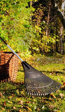 """Here's A List Of Outdoor """"To-Dos"""" That Reap The Fruits Of Fall, Plan For Spring and Keep Your Autumn #Garden Aglow. -Right At Home"""
