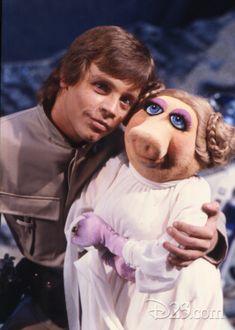 Mark Hamill Young, Princess Leia And Luke, Mark Hamill Luke Skywalker, Star Wars Cast, Star Wars Room, The Muppet Show, Star Wars Pictures, Star War 3, Jim Henson