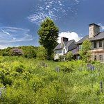 Inclusive Vermont Resort and Spa Hotel Reviews, Vermont, Wild Flowers, Acre, Wander, Trip Advisor, Twins, Trail, Spa