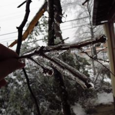 The ice storm that kept us stranded without power for three days.