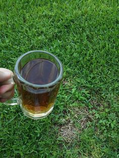 Getting rid of dead spots on the lawn using beer.