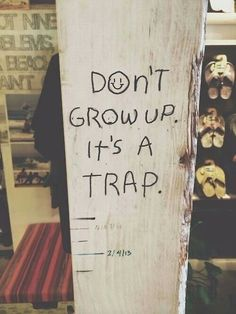 Dont grow up its a trap.