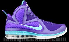 Consider these Copped! Lebron 9 hornets!