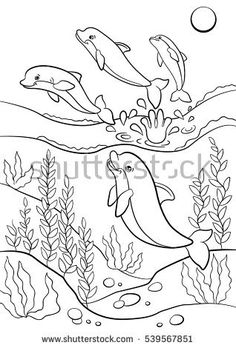 Coloring pages. Marine wild animals. Cute dolphins jump from the water and smiles.