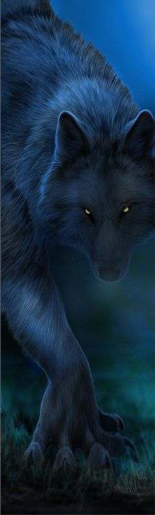Now THIS is what a real werewolf looks like. Not that stuff on Twilight! XD Dark as Midnight by ~Novawuff