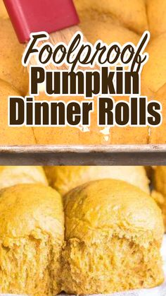 Pumpkin Dinner Rolls Pumpkin Dinner Rolls are egg free and filled with pumpkin spice flavor. This quick and easy pumpkin recipe makes the perfect bread for Thanksgiving dinner. Quick Dessert Recipes, Easy Bread Recipes, Bread Flour Recipes, Easy Bread Machine Recipes, Bread Baking, Pasta Recipes, Dinner Rolls Easy, No Yeast Dinner Rolls, Quick Rolls
