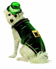 Leprechaun Dog Costume-Bloomingtails Dog Boutique Leprechaun Costume 0d2376440dff