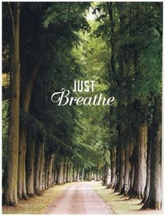 Just breathe - that's right, just breathe and focus on that for a while. Things will get better.