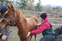 """Dr. Michelle Oakley of National Geographic Channel's """"The Amazing Dr. Oakley: Yukon Vet"""""""