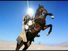World Tanks, Horses, Animals, Animales, Animaux, Animal, Animais, Horse