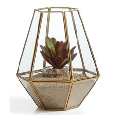 Shop Wayfair for All Planters to match every style and budget. Enjoy Free Shipping on most stuff, even big stuff.