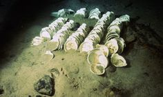 China dishes underwater on sunken Titanic.