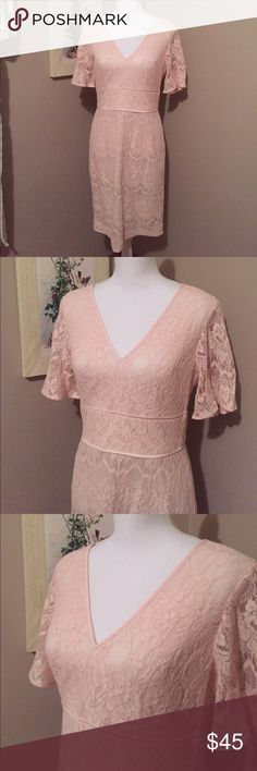 ⭐️NWT⭐️ Adrianna Papell pink lace dress Beautiful Adrianna Papell soft pink lace dress. No flaws. Was purchased at a discount store so the label has been marked through as shown in picture. Gorgeous neckline with lace only sleeves. Midi fit with flattering fit in the waist line. Adrianna Papell Dresses Midi