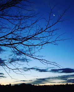 Skyline at Dawn Edinburgh skyline at dawn with the crescent moon still out and a bare tree silhouette.  #edinburgh #skyline #cityscapes #moon #lunar #silhouette #crescentmoon #winter #sunrise #bare #arthursseat #inverleithpark #scotland #capital #blue #frasermccullochphotography