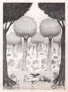 Petr Sís Forest (1986) Art And Illustration, Illustration Children, Ink Illustrations, Children Books, Kokoro, Typography Prints, Illustrators, Folk, Pencil