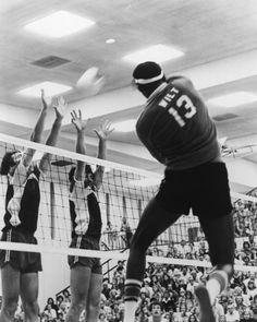 wilt x seattle smashers x professional volleyball