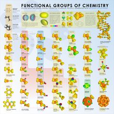 functional groups chart | functional-groups-chemistry-poster-medium.png